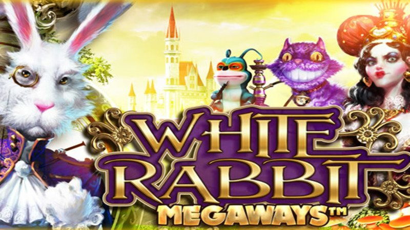 white rabbit bonus buy